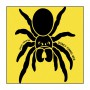 Kids T-Shirt - Spider