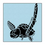 Turtle on Light-Blue clothing