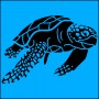 Adults Tee - Loggerhead Turtle